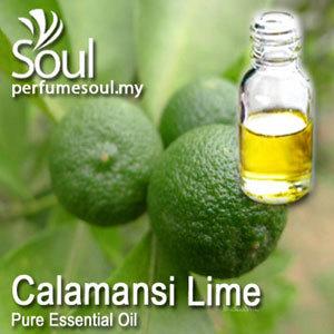 Pure Essential Oil - Calamansi Lime Oil