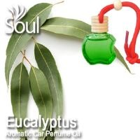 Eucalyptus Aromatic Car Perfume Oil