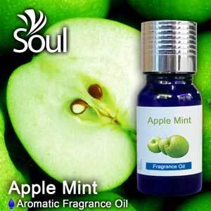 Aromatic Fragrance Oil - Apple Mint