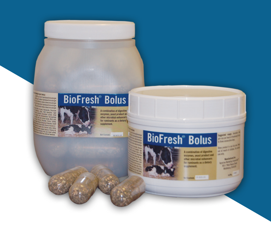 BioFresh® Bolus S216