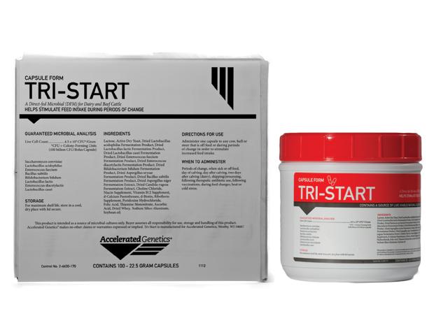 Tri-Start Bolus (Cow Care - Feed Additives) A003