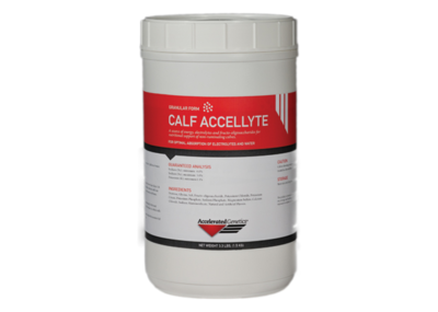 AccelLyte Calf Electrolyte