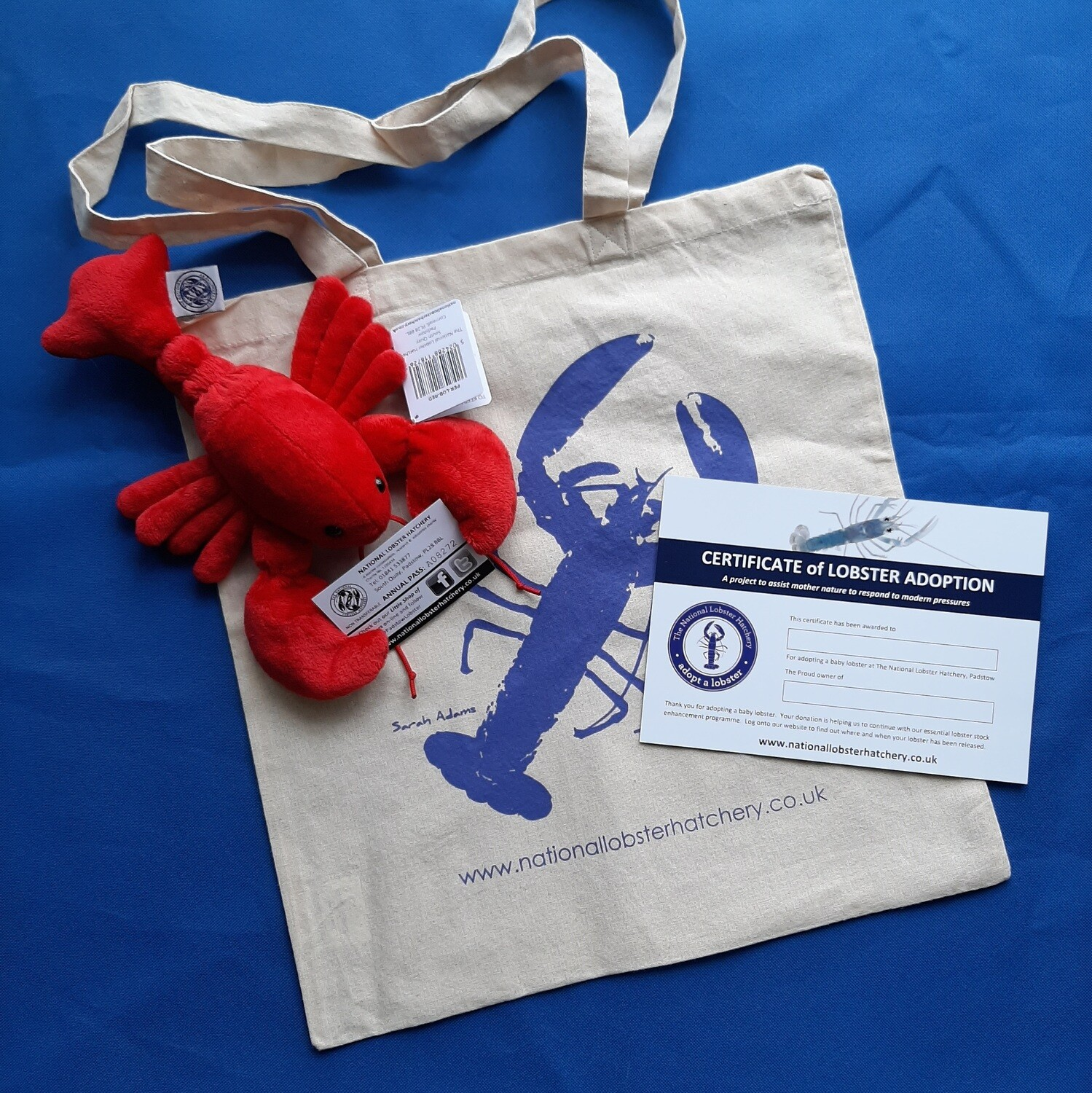 Adopt a Lobster Gift pack with Red or Blue Fluffy Lobster in our new