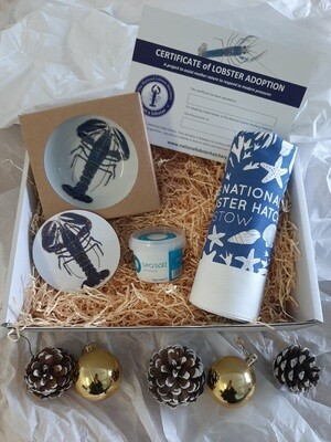 Adopt a Lobster Christmas gift pack - Option 1