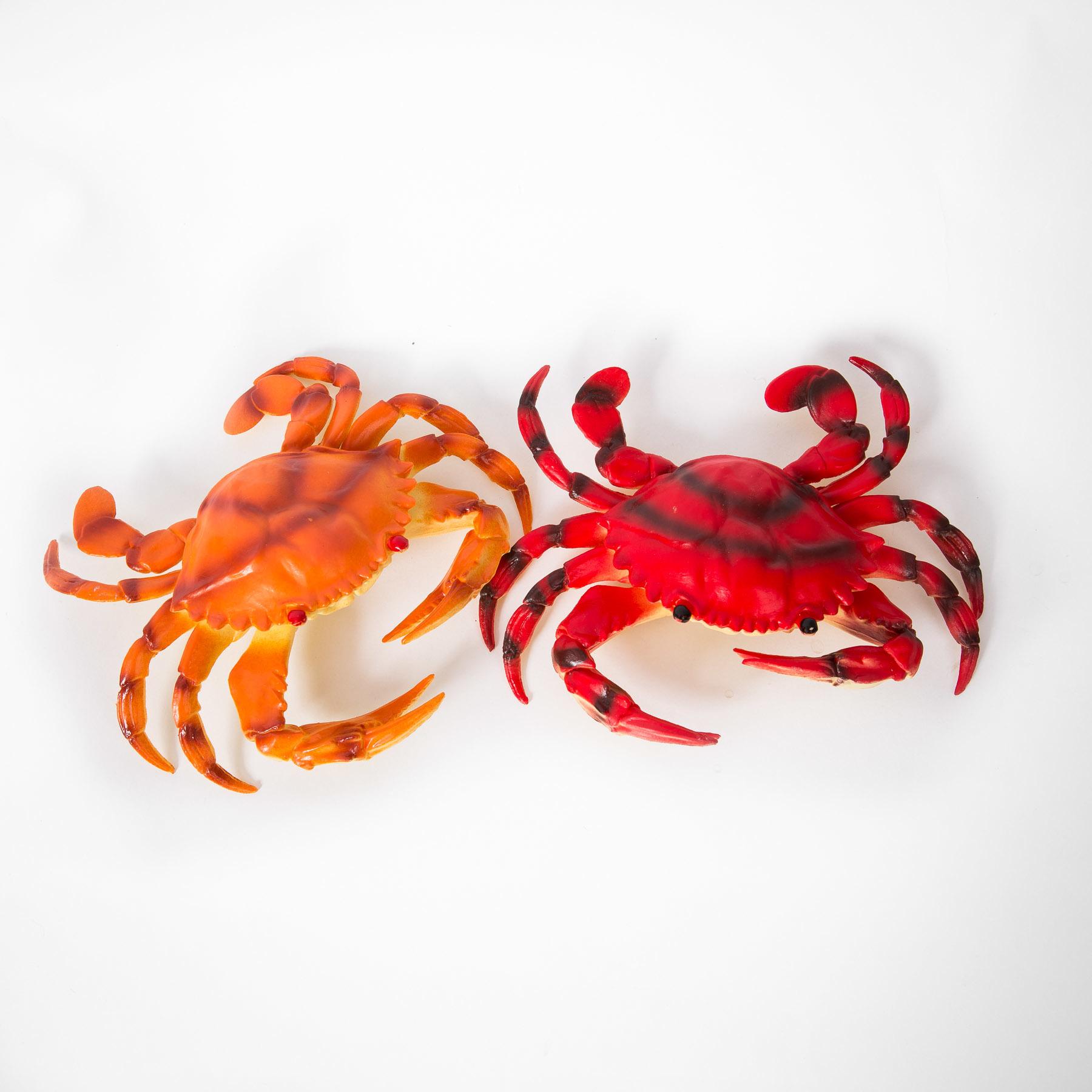 Crab 00106