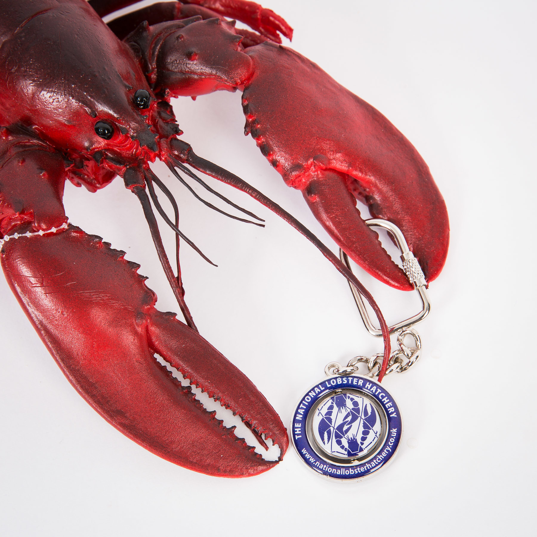 National Lobster Hatchery Spinner Key Chain 00175