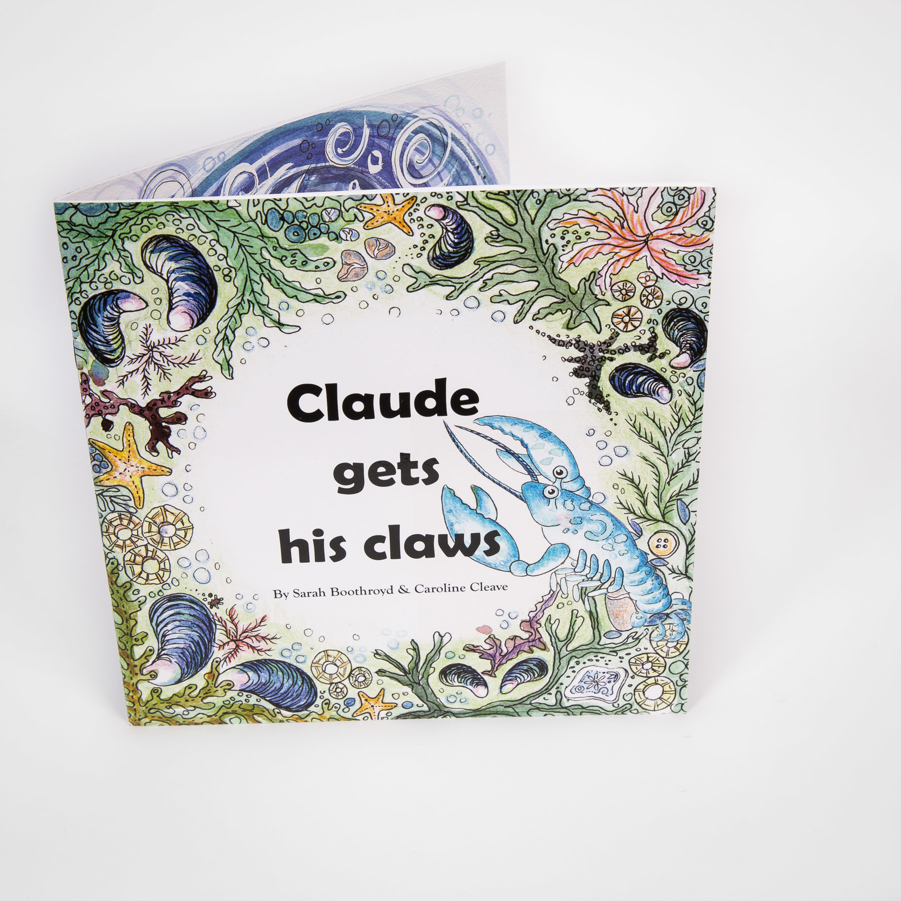 Adopt a Lobster Gift Pack with Claude gets his Claws children's book