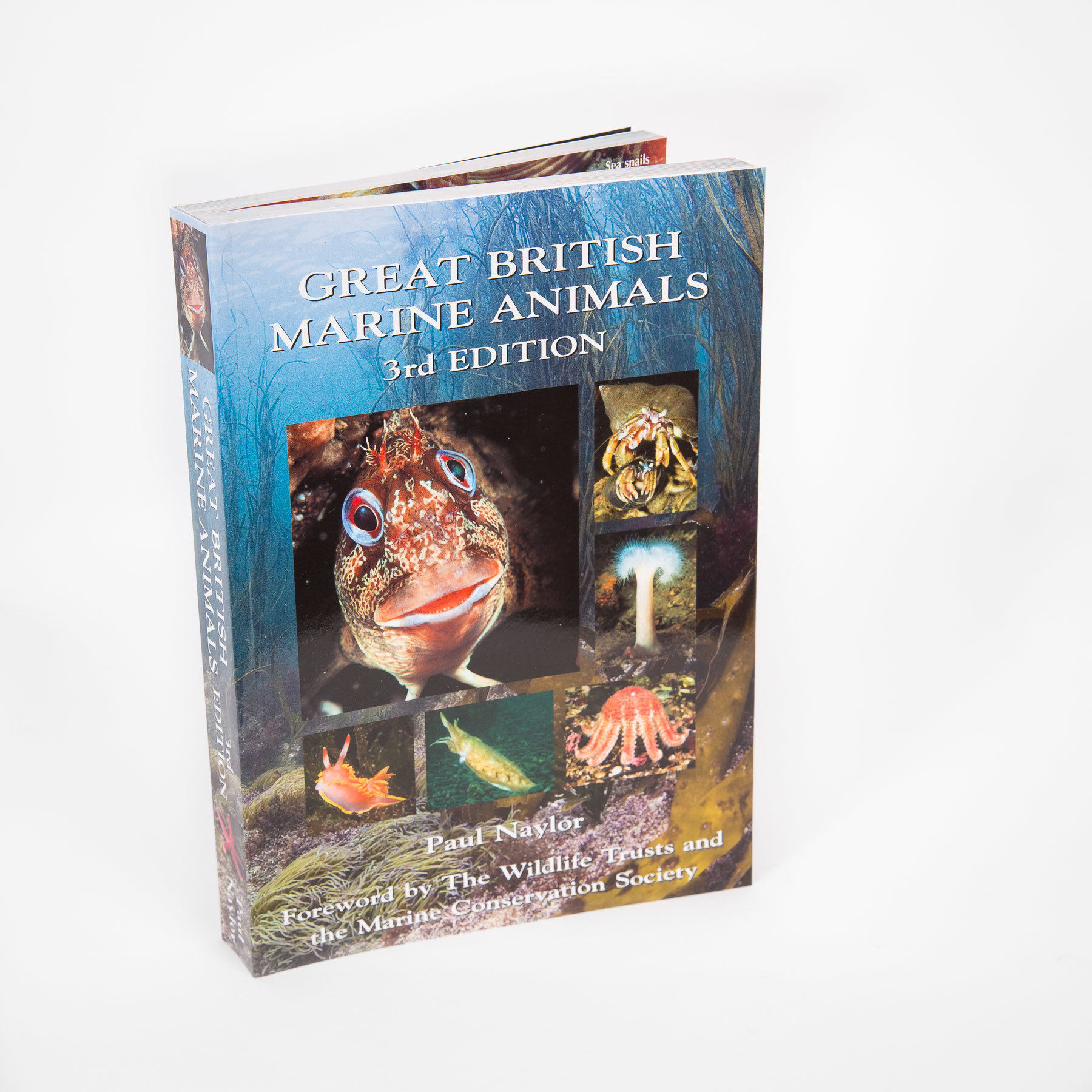 Great British Marine Animals 3rd Edition 00193