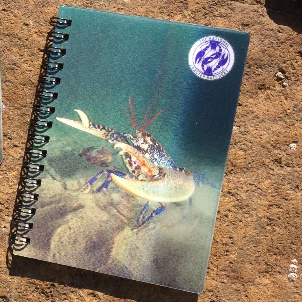 3D Jotter Notebook