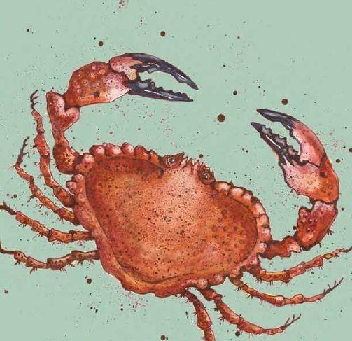 Crab Cushion (Colour)