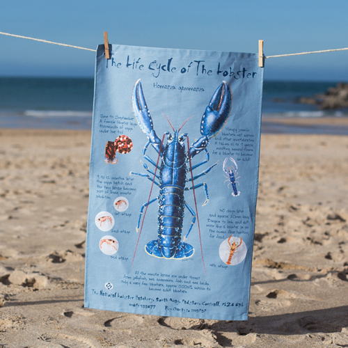 Lobster Life Cycle T-Towel