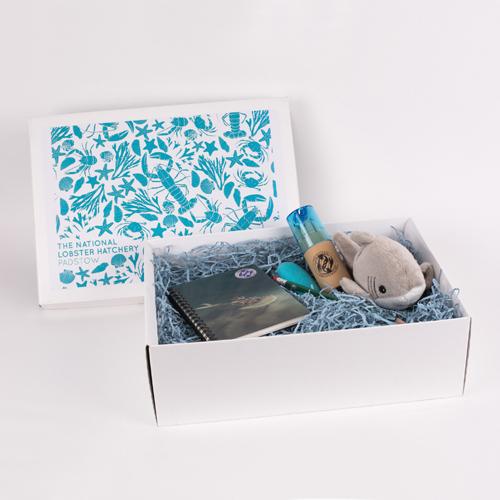 Children's Gift Hamper or alternative party bag 00221