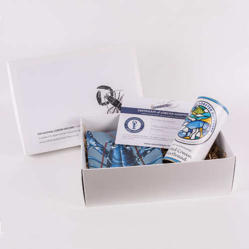 Adopt a Lobster Gift Pack with Clotted Cream Shortbread & Lobster Lifecycle T-Towel