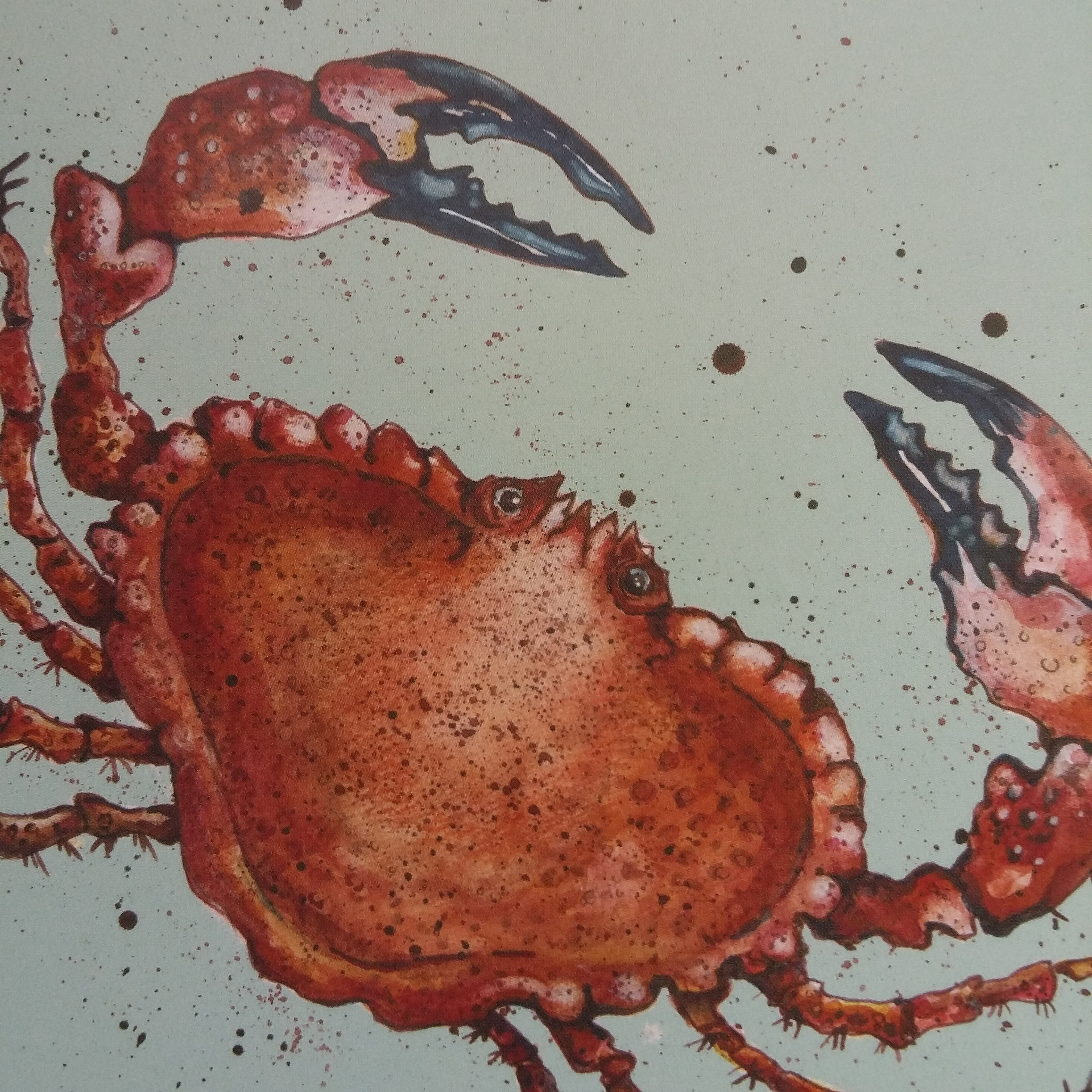 Fruits of the Sea - Crab