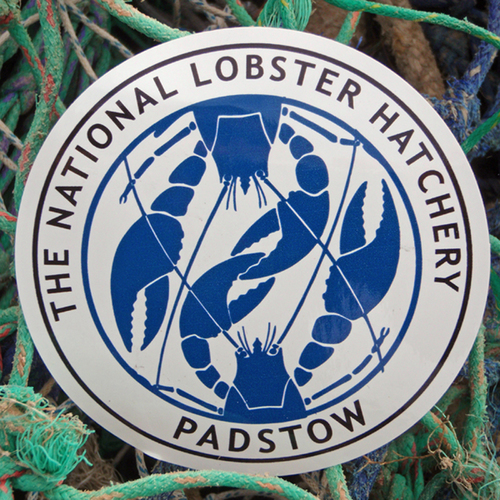 Padstow Lobster Car Stickers