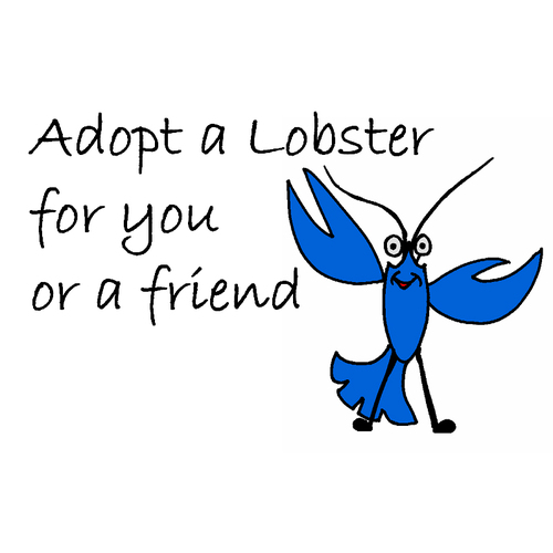 Adopt a Lobster (single) 00000044