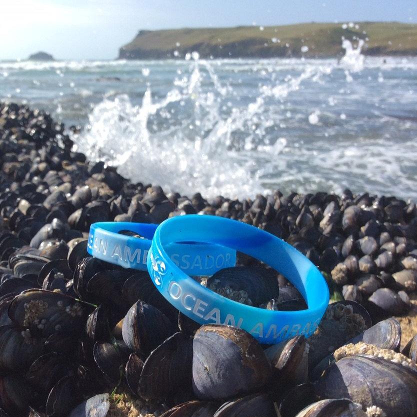 NLH Ocean Ambassador Rubber Wristband 00296