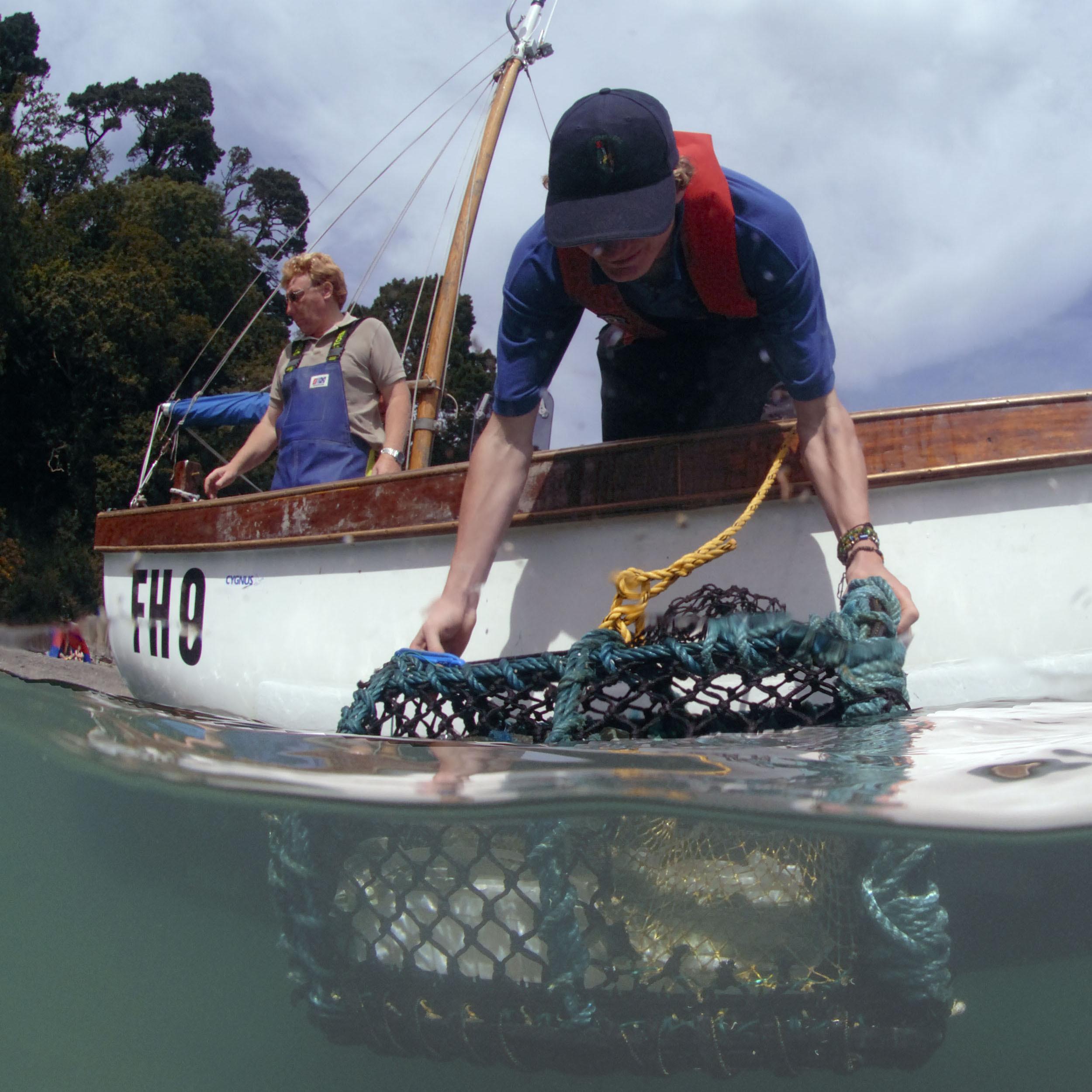 Sponsor a Lobster Release! 00013
