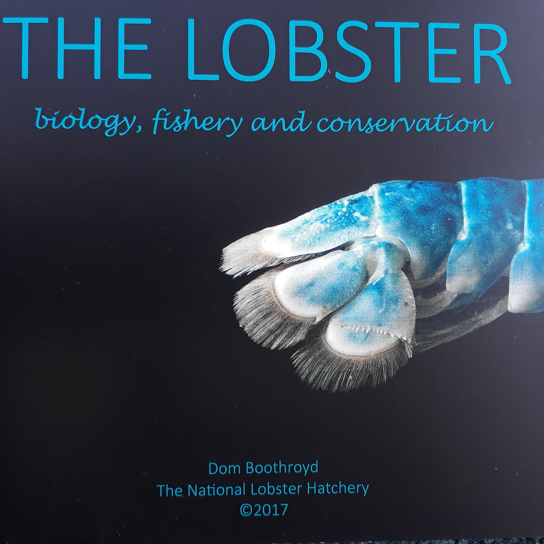 The Lobster - biology, fishery and conservation by Dom Boothroyd 00309