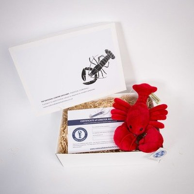 Adopt a Lobster Gift Pack with Red or Blue Fluffy lobster
