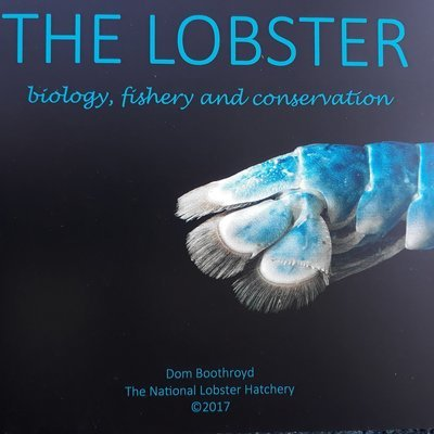 The Lobster - biology, fishery and conservation by Dom Boothroyd