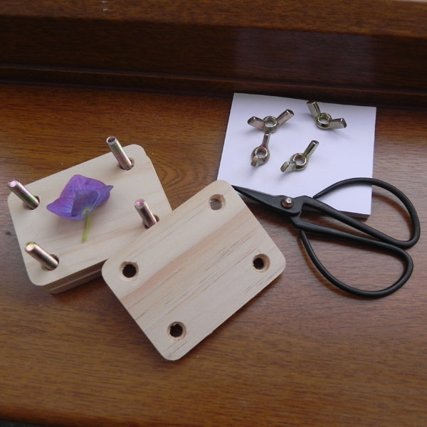 Minature Flower Pressing Kit