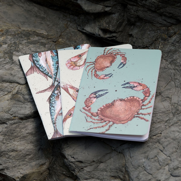 Pack of 3 lined Notebooks - designs by Caroline Cleave 00329
