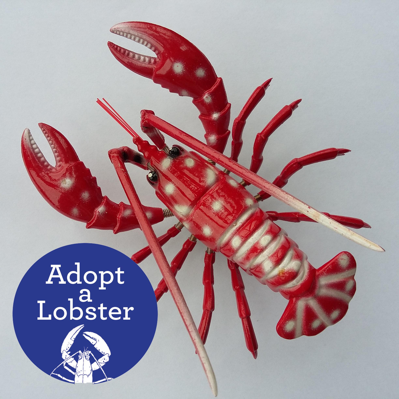 Secret Valentine - Adopt a Lobster & Lobster Bobble Magnet 00342