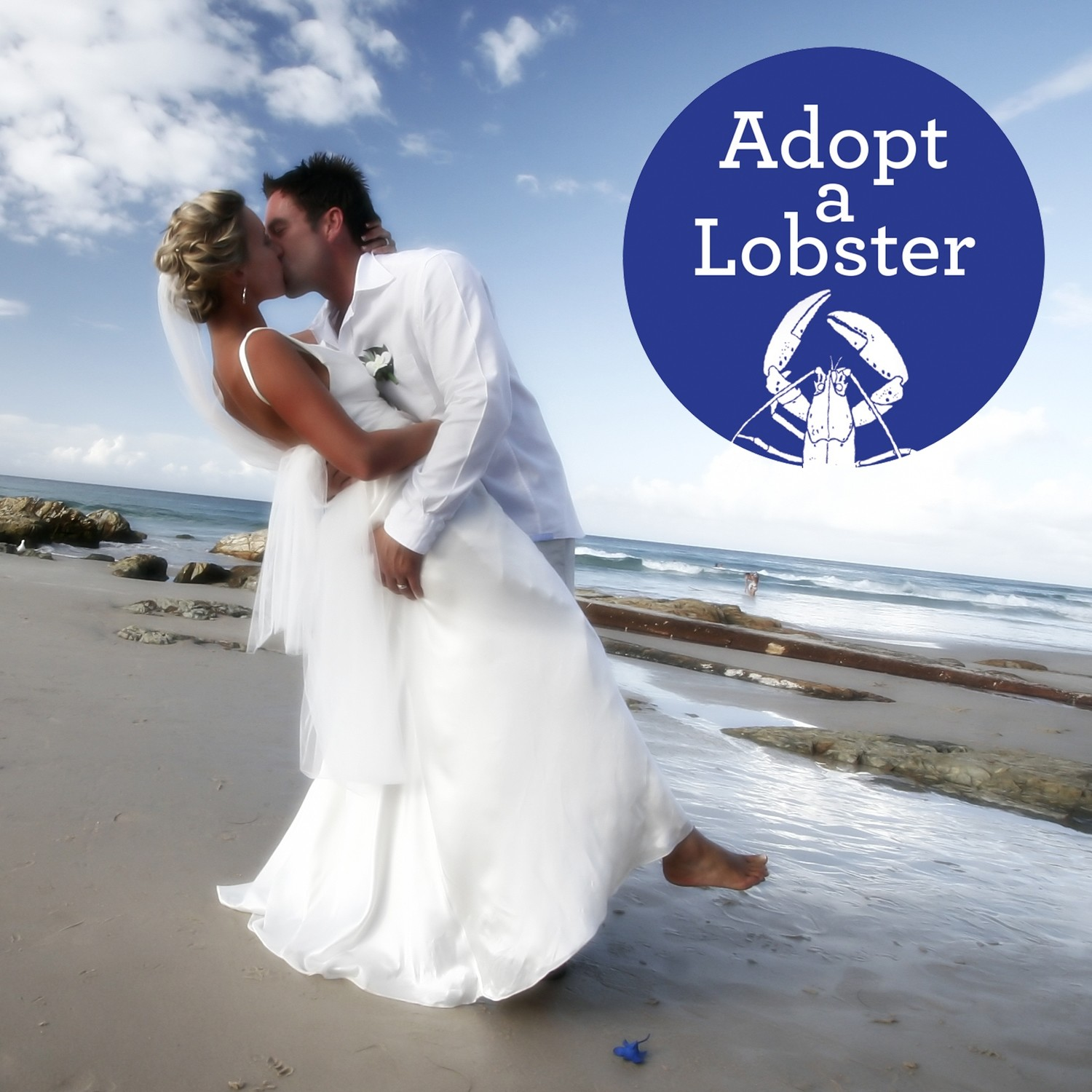 Adopt a Lobster Wedding Favours