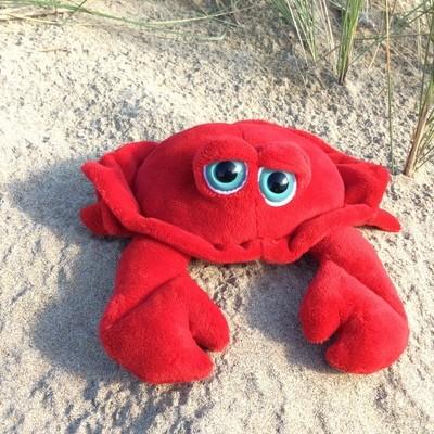 Bright Eye Crab