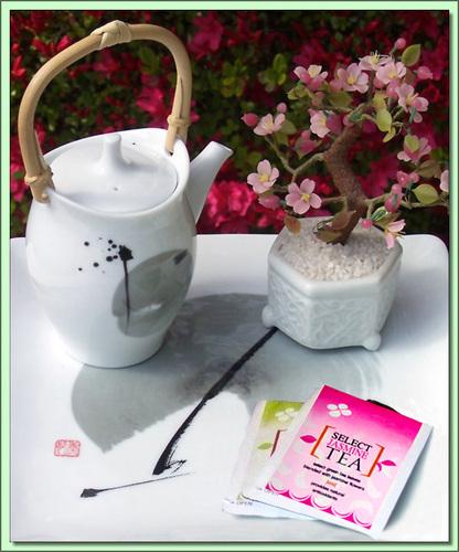 Jasmine Green (Japan) - 25 Tea bags