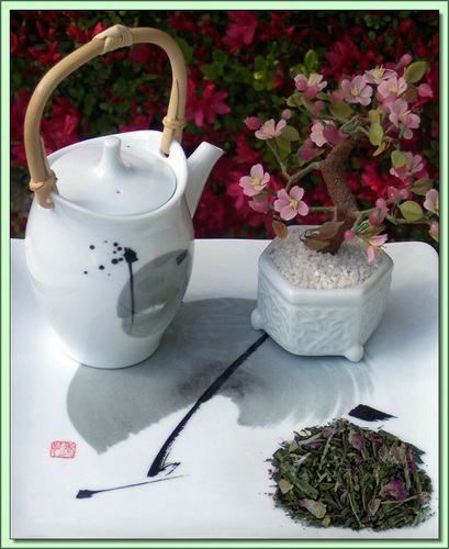 Organic Kyoto Cherry (China) - 20 Tea Bags