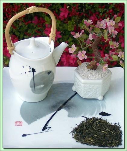 Organic Sencha Fuji (Japan Style) - 4 oz.