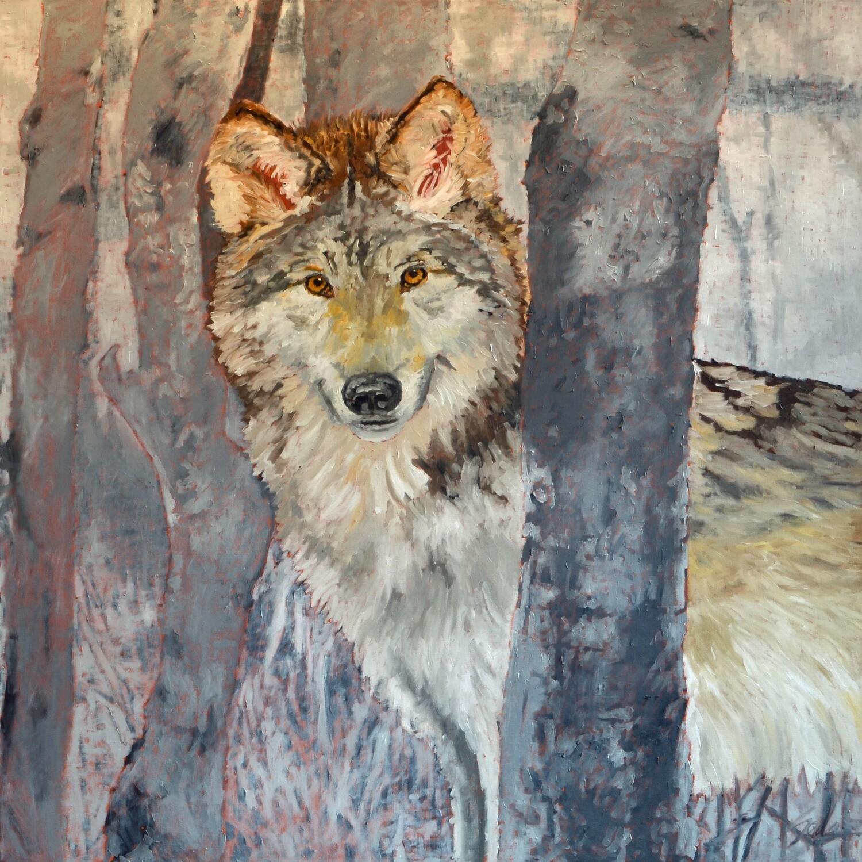 Wolf 1, oil on canvas, 48x48