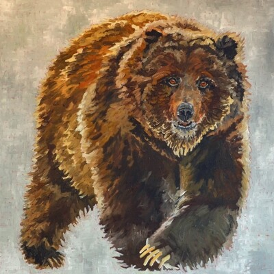 Grizzle, oil on canvas, 36x36
