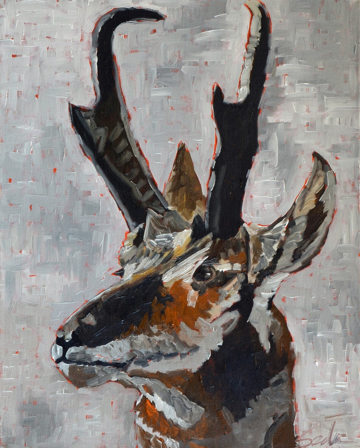Prong Horn Antelope, oil on canvas, 16x20