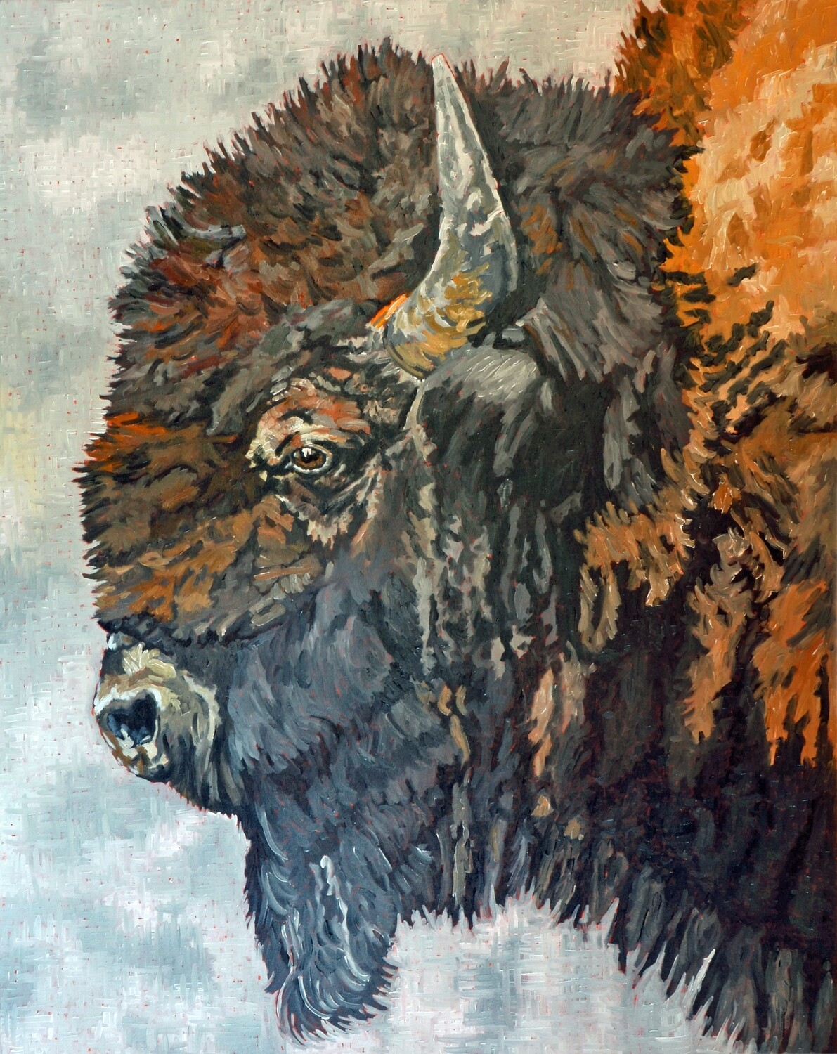 Bison 2, oil on canvas, 48x60