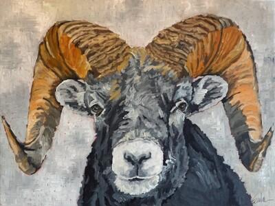 Bighorn Sheep, oil on canvas, 40x30