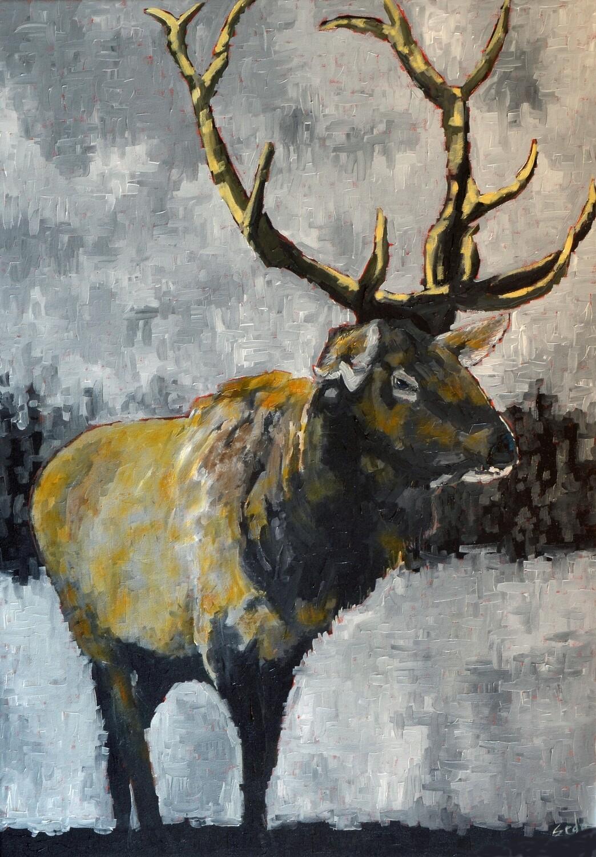 Elk 1, oil on canvas, 28x40