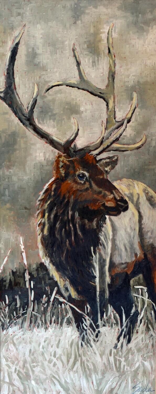 Elk 2, oil on canvas, 24x60