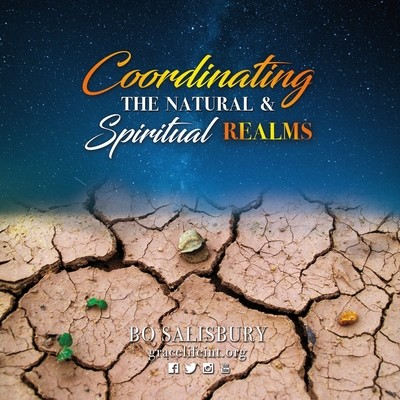 Coordinating the Natural and Spiritual Realms (MP3 download)