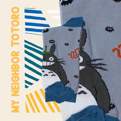 Totoro Zocks