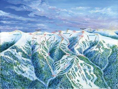 Ski Cooper Chicago Ridge Trail Map