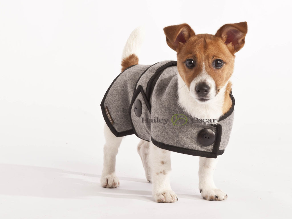 Blazer Wool Dog Coat - Grey
