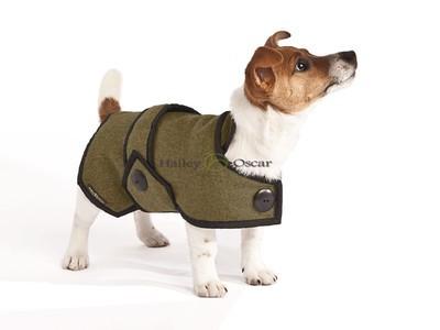 Blazer Wool Dog Coat - Khaki Green