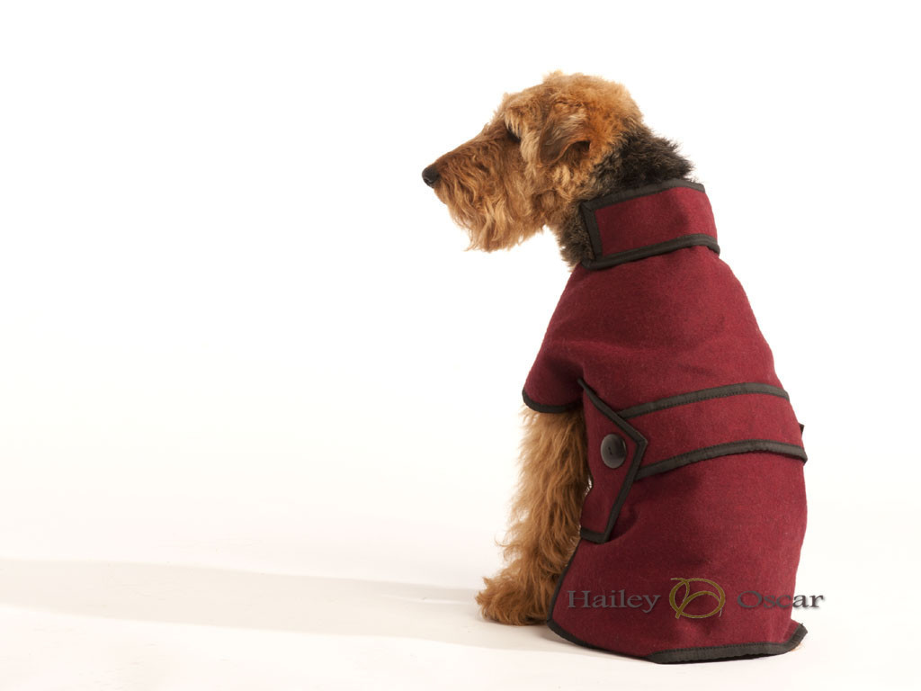 Blazer Wool Dog Coat - Maroon