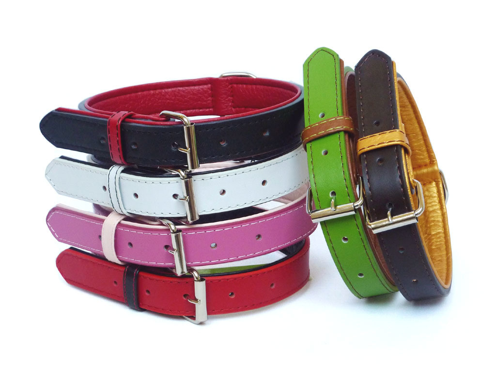 Fusion Leather Collar Lead