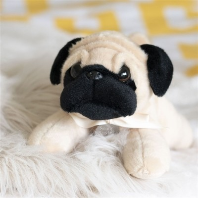 Perry The Personalised Pug