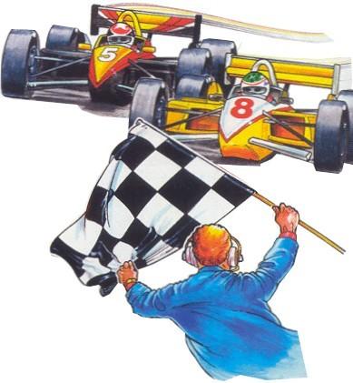 """Race Track Flag on Pole - 24""""X30"""""""