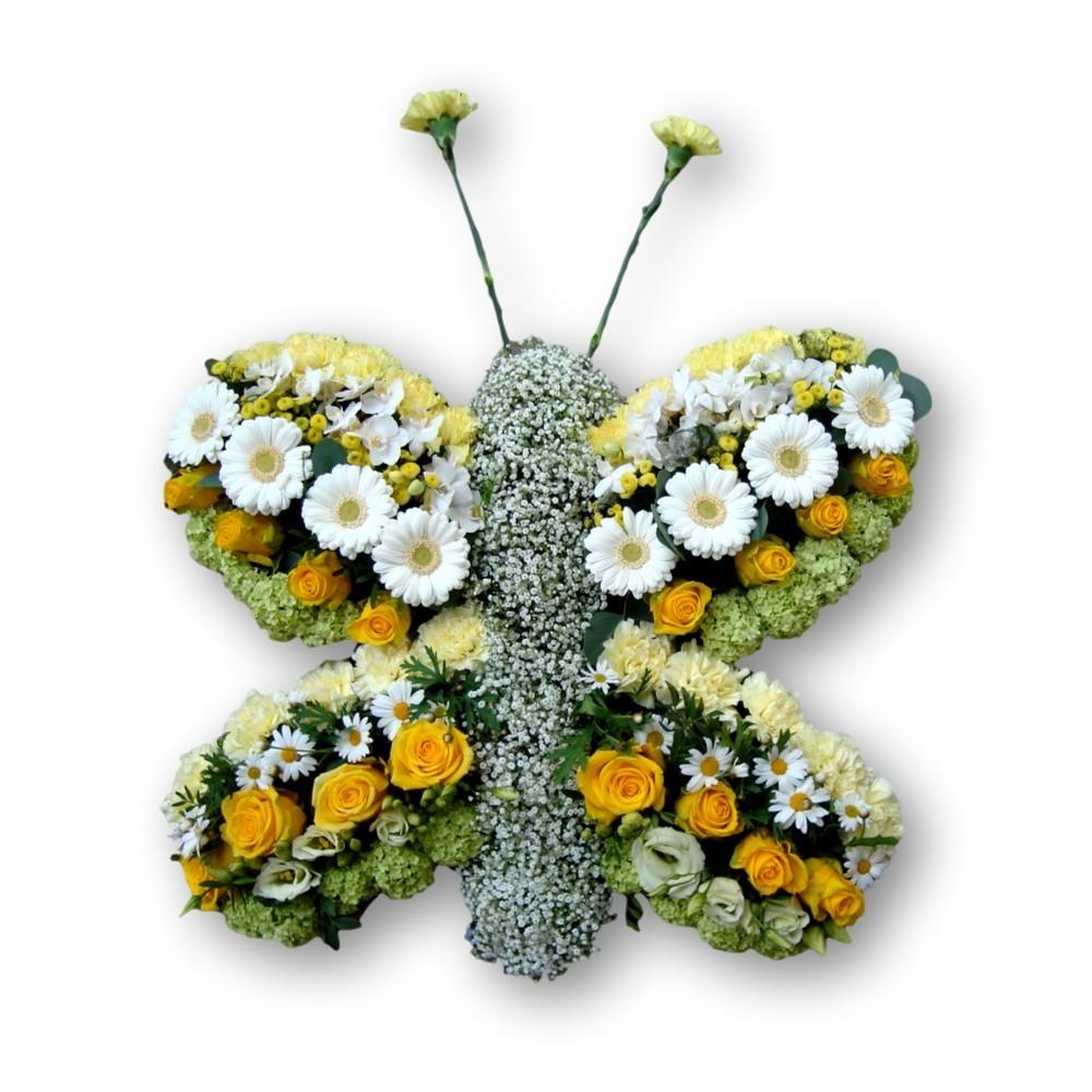 Schmetterling 'Four Season SG01'